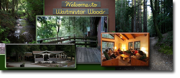 Westminster-woods-pix-collage-