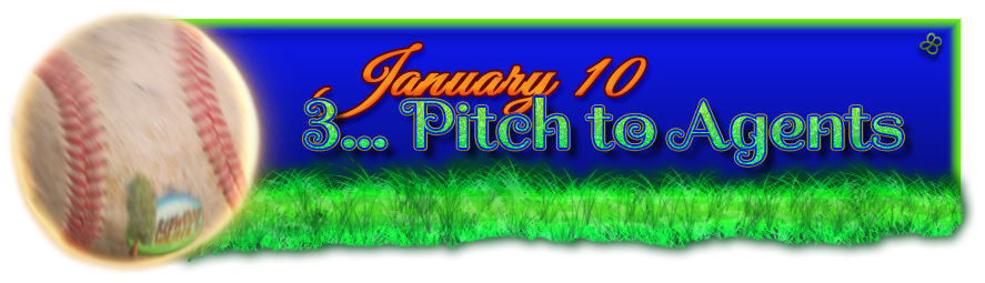 Redwood Writers Jan2016 Pitch