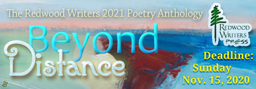 NARROW_HEADER_2021POETRY-ANTHOLOGY-2